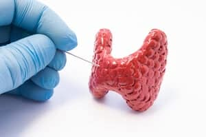 Hipoparatiroidisme (Hypoparathyroidism ) - Punca, Simptom, Diagnosis, Faktor Risiko dan Rawatan