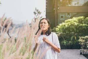 Demam Hay (Hay Fever) - Simptom, Punca, Diagnosis, Faktor Risiko dan Rawatan