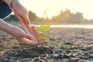 Tips Memelihara Alam Sekitar Daripada Bloggers Dan Influencers Alam Sekitar