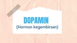 Dopamin (Dopamine)