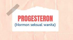 Progesteron (Progesterone)
