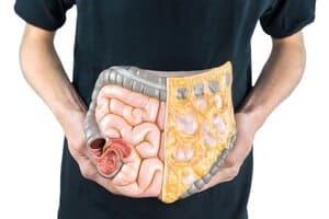 Usus kecil : Ketahui lebih banyak mengenai organ pencernaan ini