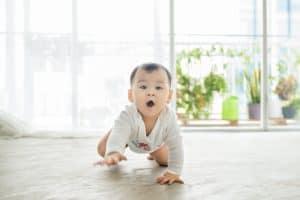 fakta bayi